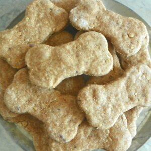 Blueberry Granola Dog Biscuits