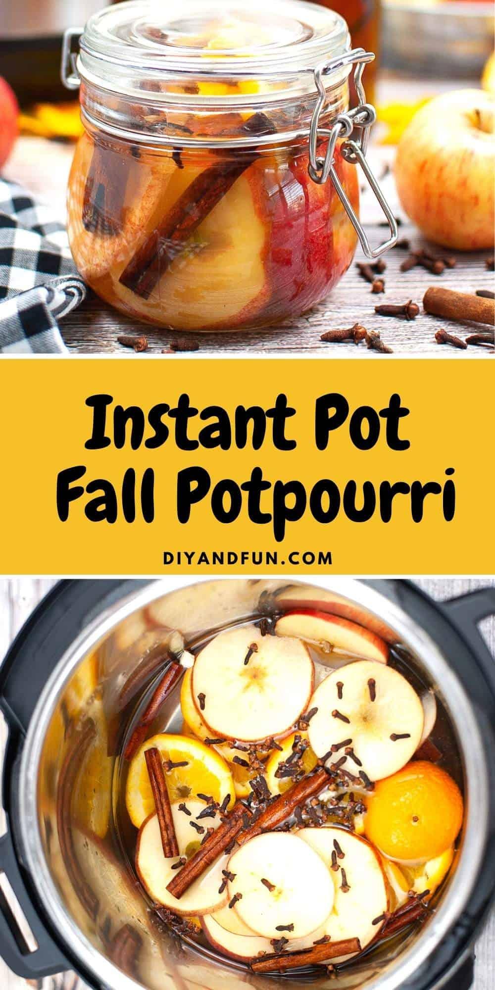 Homemade Instant Pot Fall Potpourri